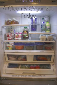 fridge-main