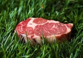 grass-fed-beef-300x212